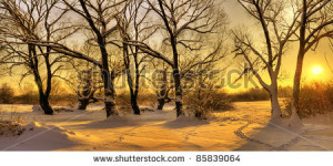 stock-photo-beautiful-winter-sunset-with-trees-in-the-snow-85839064